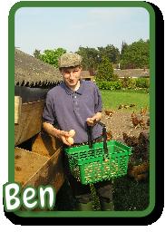 Ben's Eggs - Free Range Eggs Shropshire